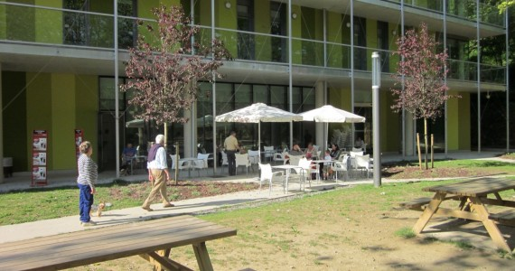 Hostels-san-sebastian-green-nest (14)